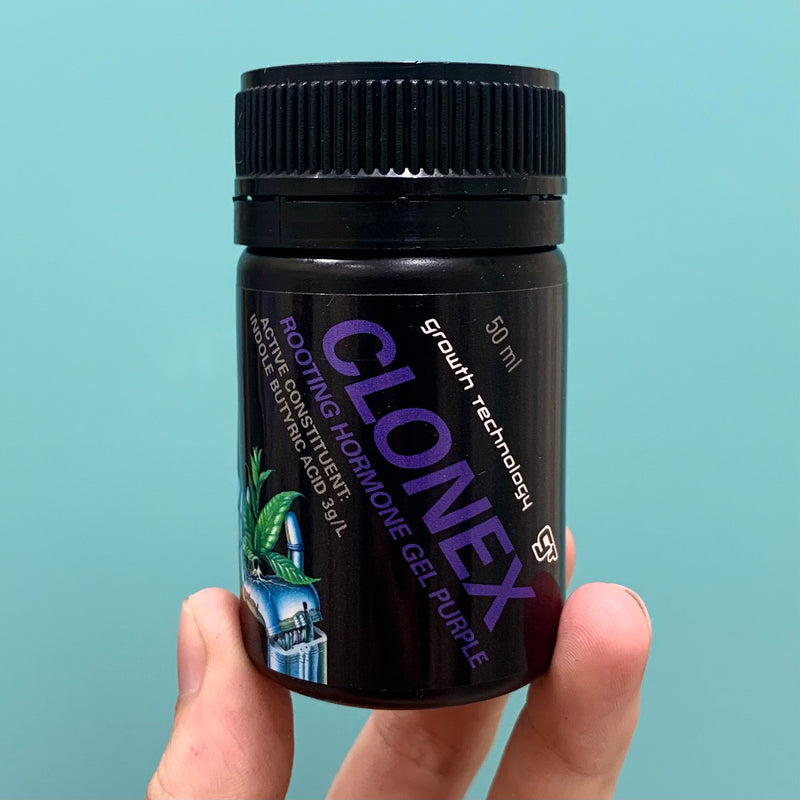 Clonex Purple Rooting Gel