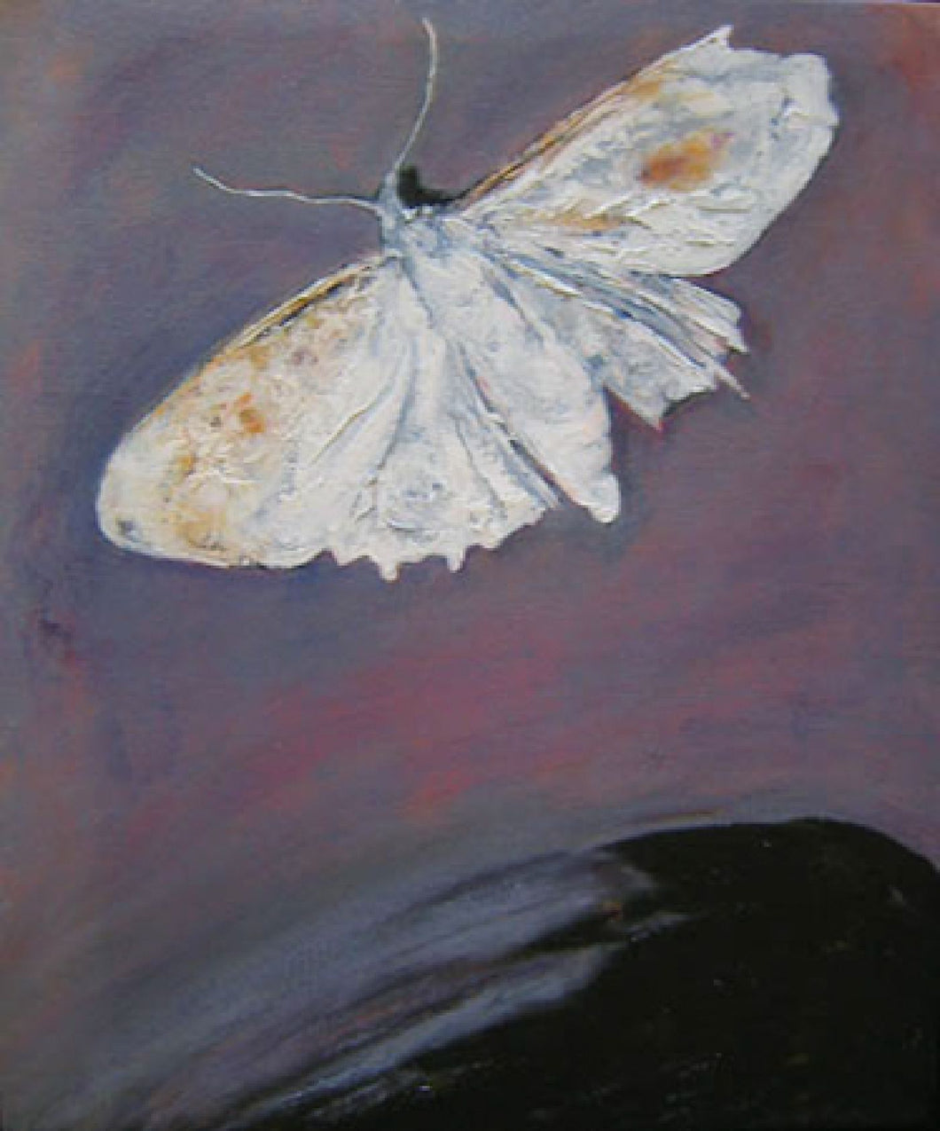 Bebe E De La Ni Wai - Moth on the Water