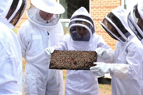 2 Day Beekeeping Course Saturday 14th & Sunday 15th April (GST Included)