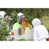 Spring and Summer Beekeeping Courses at THE BEE HIVE