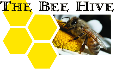 The Bee Hive