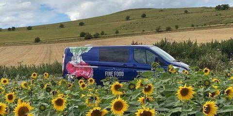 Heritage van peering through sunflowers