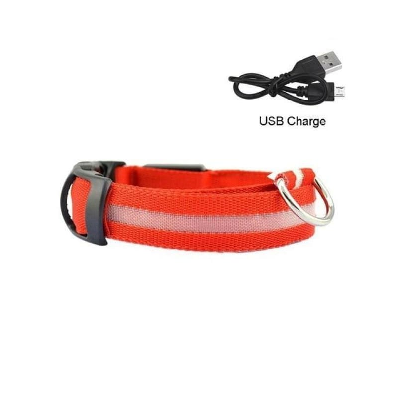 Light Night Safety LED dog collar - Red / S - pets