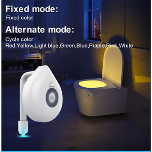 Motion Activated LED Toilet Bowl Night Light - night light