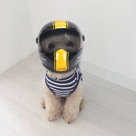 Pet Helmet - 1 / S - pet - pets