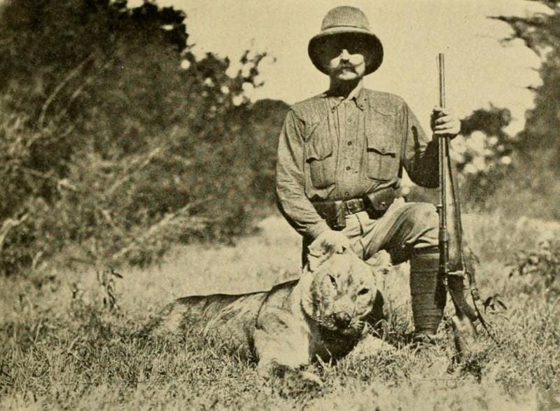 King Leopold II Lion Hunt