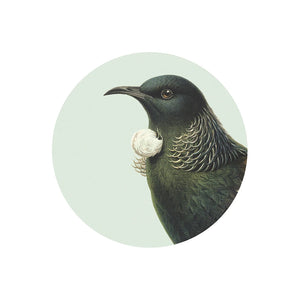Hushed Green Tui Coaster