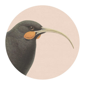 Hushed Blush Huia Placemat