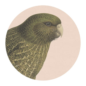 Hushed Blush Kakapo Placemat