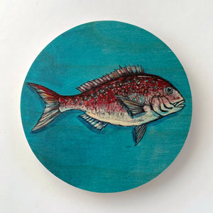 Snapper Round Ply Wall Art