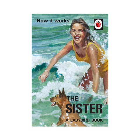 Ladybird How it Works: The Sister