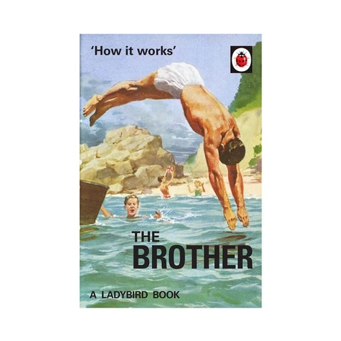 Ladybird How it Works: The Brother