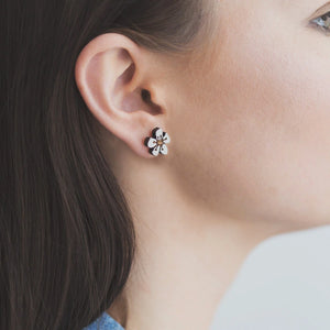 Manuka Rimu Stud Earrings