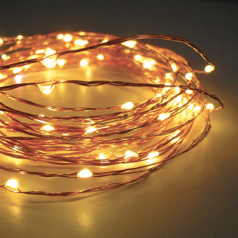10m AA 100 LED Seed Light String