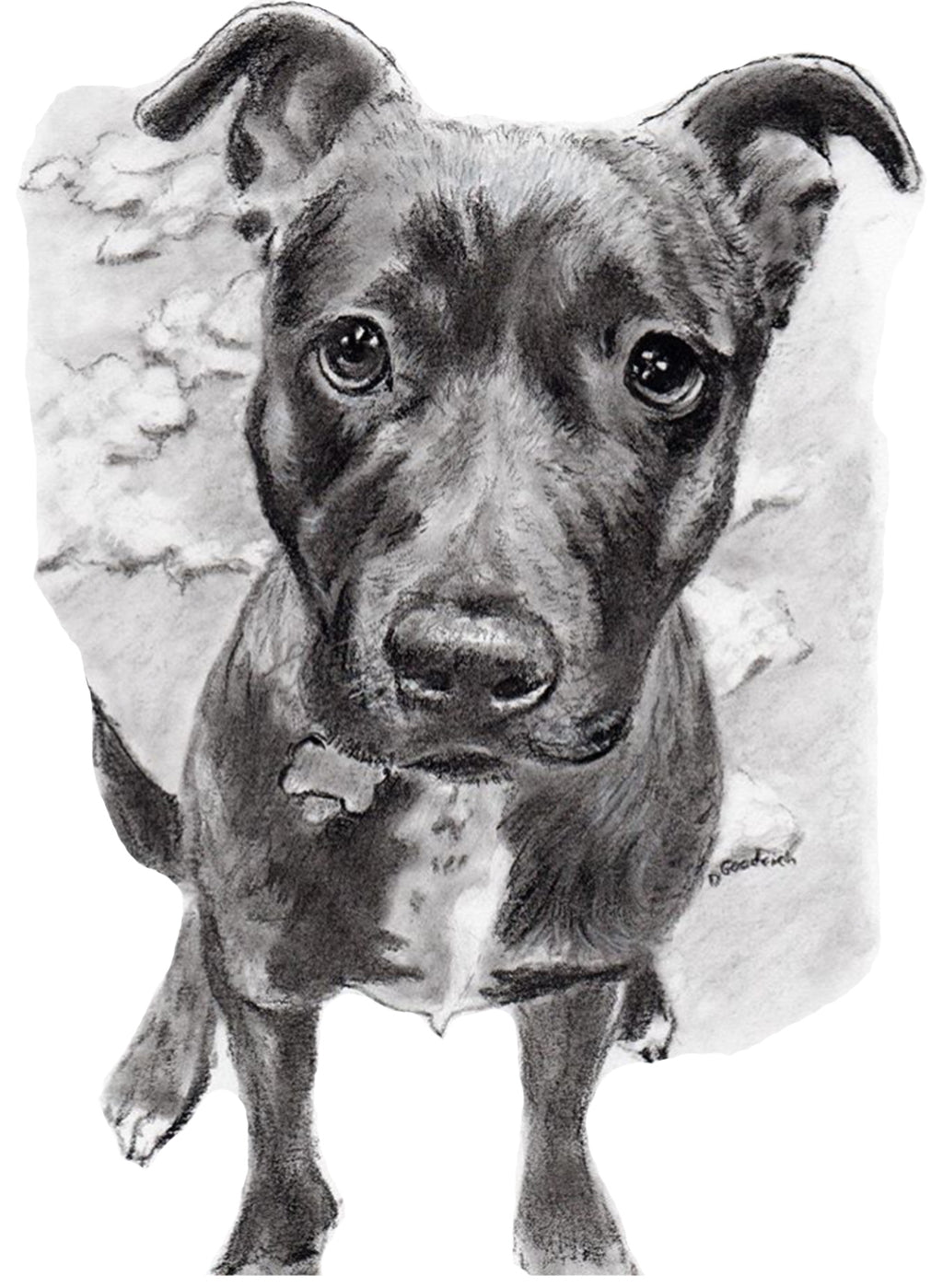 Custom pet portraits, custom dog portraits, dog portraits, pet portraits