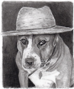 Pet portraits, custom pet portraits, custom dog portraits