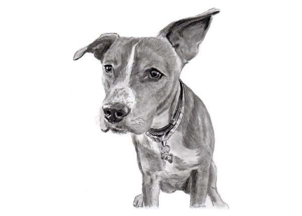 Order your Custom Pet Portrait Today!     After choosing size & number of beasts, select corresponding finishing option.