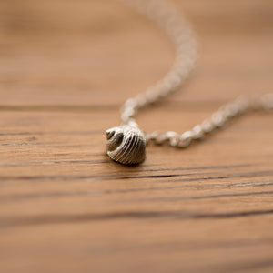 A tiny fine silver seashell attached to a sterling silver chain, displayed here on an oak board.