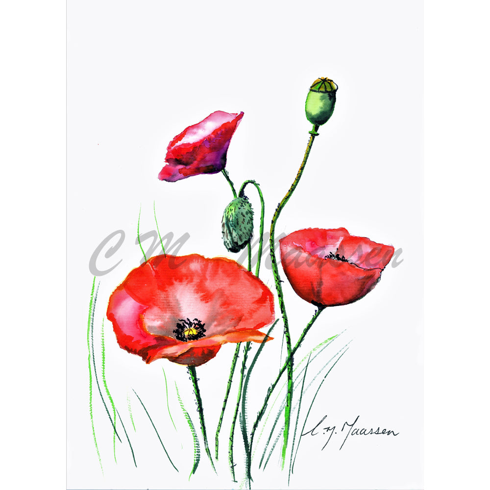 Anzac Poppies Card by Christina Maassen