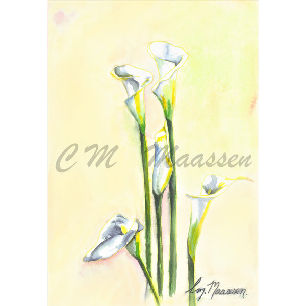Arum Lilly Card by Christina Maassen
