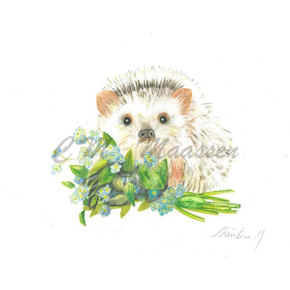 Baby Hedgehog & Forget Me Nots Cards by Christina Maassen