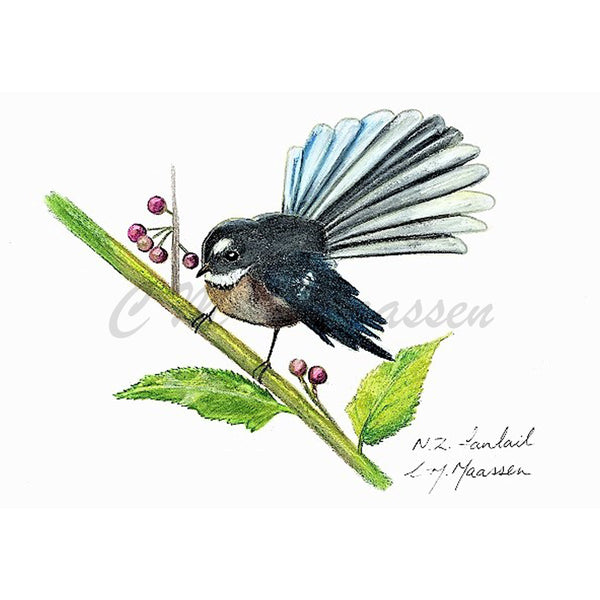 Fantail Cards by Christina Maassen