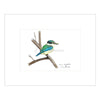 Kingfisher Mounted Art Print