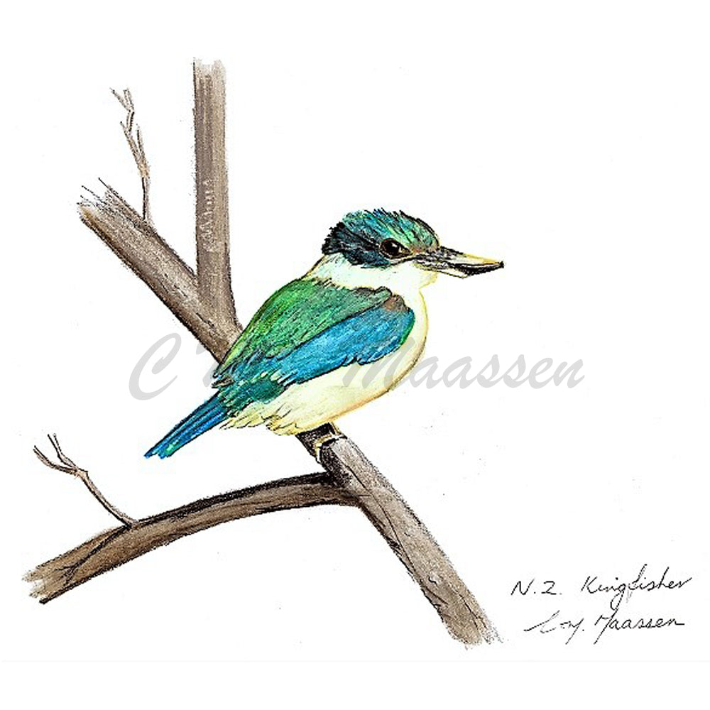 Kingfisher Cards by Christina Maassen