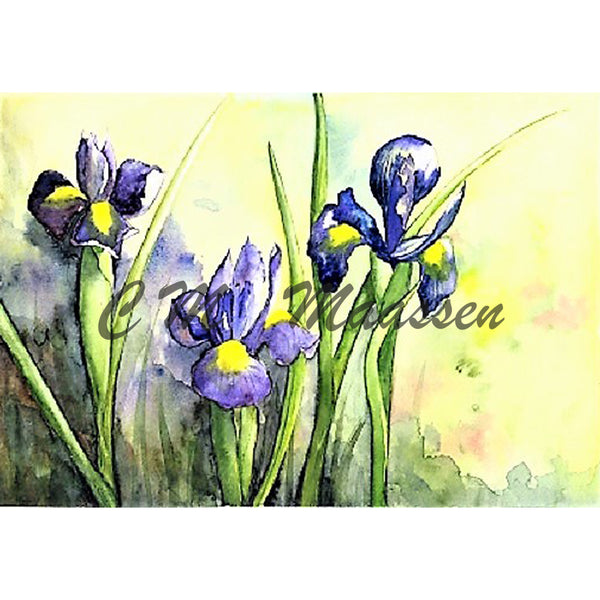 Iris Wholesale Card by Christina Maassen