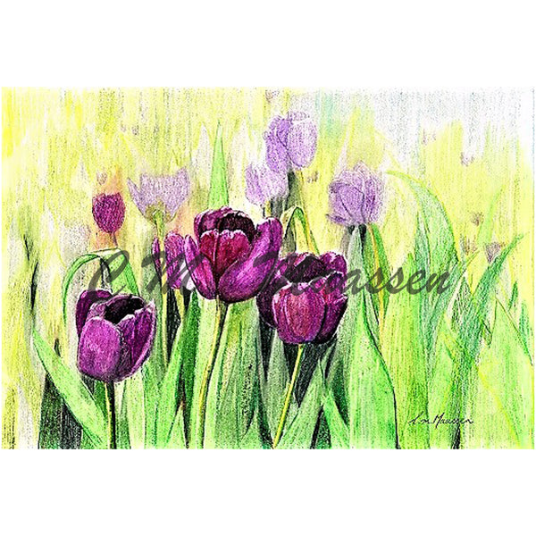 Magenta Tulips Cards by Christina Maassen