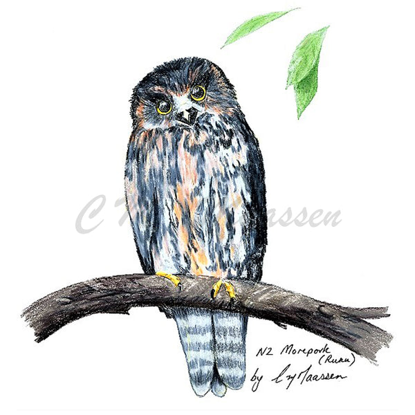 Morepork Cards by Christina Maassen