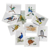 NZ Native Birds Card Pack