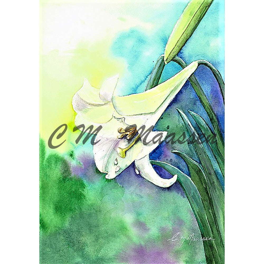 White Lilly Cards by Christina Maassen