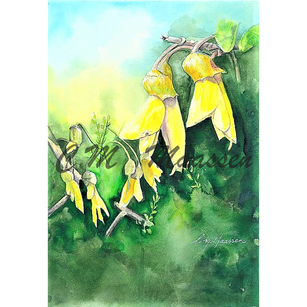 Kowhai Cards by Christina Maassen