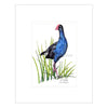 Pukeko Mounted Prints