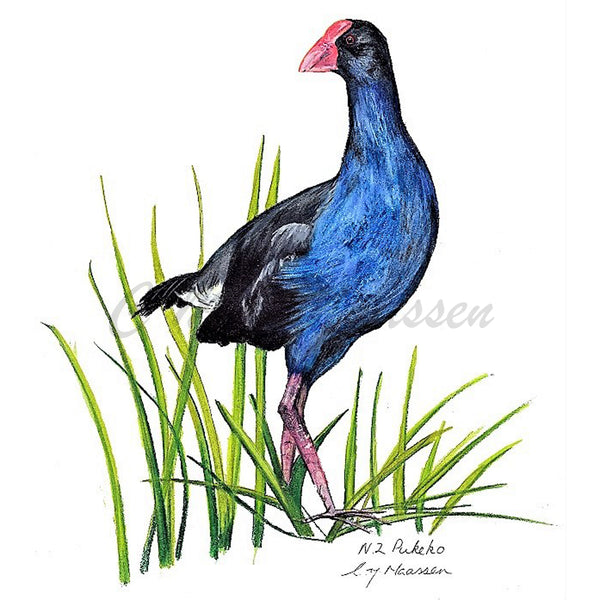 Pukeko Cards by Christina Maassen