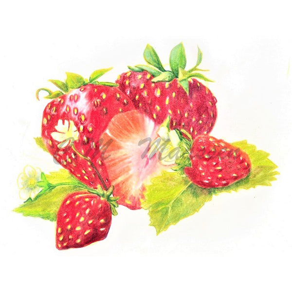 Strawberries Cards by Christina Maassen