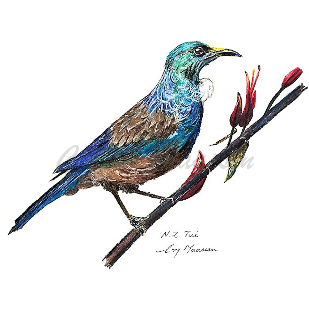 Tui Print by Christina Maassen