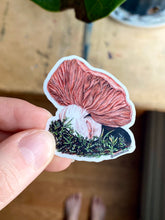 "Load image into Gallery viewer, ""Slumber"" Fungi Mushroom Sticker"