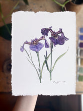 "Load image into Gallery viewer, ""Wild Purple Iris"" Botanical Cotton Art Print with Hand-Torn Deckled Edges"