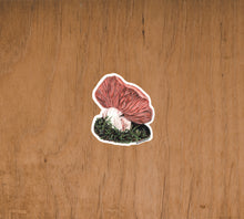 Load image into Gallery viewer, Fungi Mushroom Sticker, Mushroom Sticker, Slumber Sticker, Ladder Mouse, Brandy Klindworth, Alaska Artist, Alaska Mushroom, Fairbanks