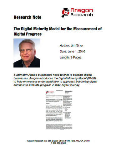 2016-16 The Digital Maturity Model for the Measurement of Digital Progress
