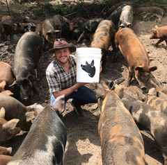 Chef Josh at a Kawartha pig farm