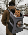 Large Cat Backpack with Breathable Window - LuxxStores