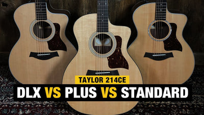 Comparing Taylor Guitars | 214ce vs 214ce DLX vs 214 CE Plus