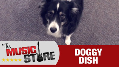 The Music Store: Doggy Dish