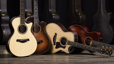 New Taylor Guitars Updates For 2020