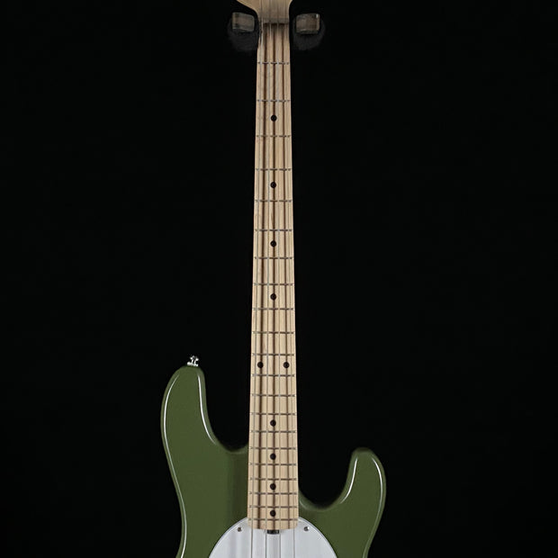 Sterling StingRay RAY HH (6298)