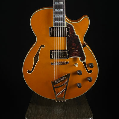 D'Angelico Excel SS (4184)