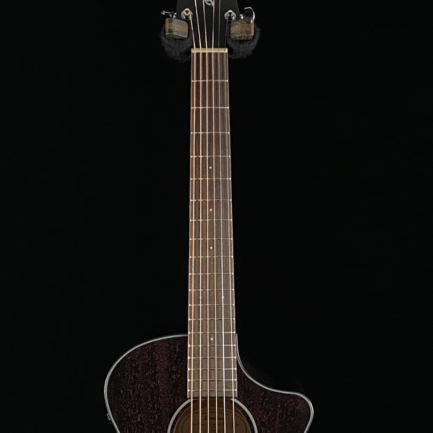 Breedlove Discovery Companion CE Custom Black Widow (8639)